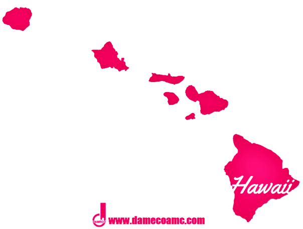 11-DAMECO appraisal service HAWAII
