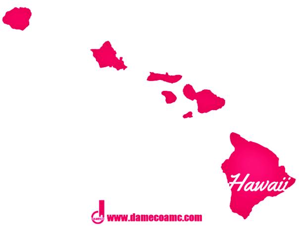 11-DAMECO appraisal service HAWAII