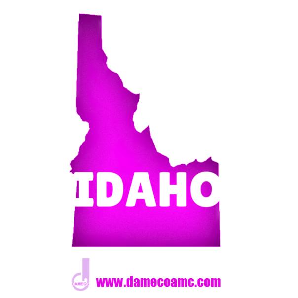 12-DAMECO appraisal service IDAHO