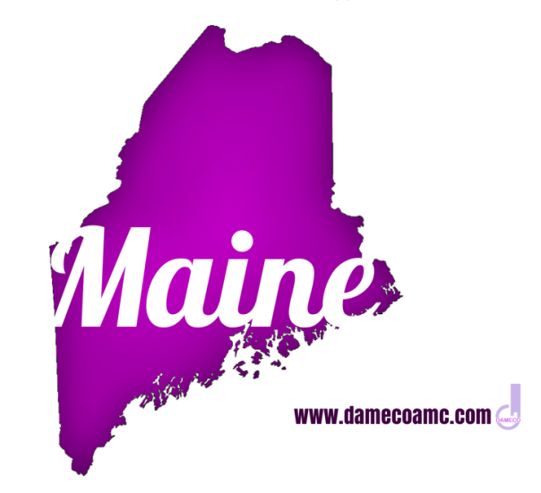 9-DAMECO amc appraisal services MAINE
